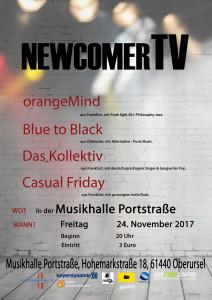 00 Flyer NewcomerTV November