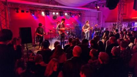 Hörnerv # 263 : Die Bands/Acts der VirusMusikRadioShow 2017
